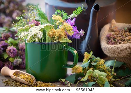 Enameled Mug Of Summer Healing Herbs, Old Tea Kettle And Medicinal Plants For Healthy Herbal Tea. He