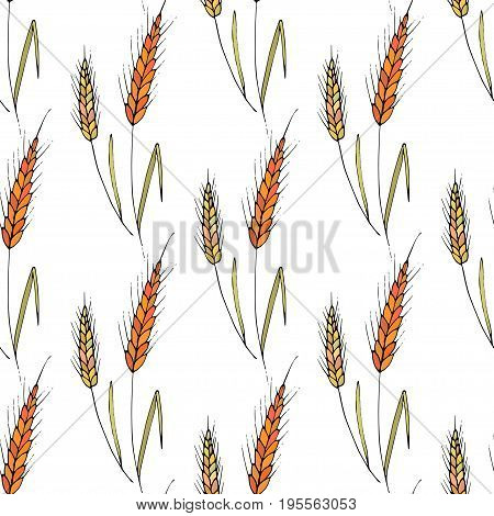 Vector seamless pattern with doodle drawing of wheat ears. Whole grain, natural, organic background for bakery package, bread products. Vector illustration of growing rye field. Barley, corn texture.