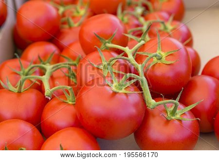 A bunch of red tomatos on the market