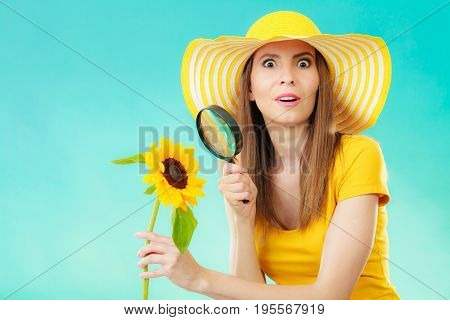 Botanist woman surprised face expression in yellow hat examining flower looking through magnifying glass on blue background