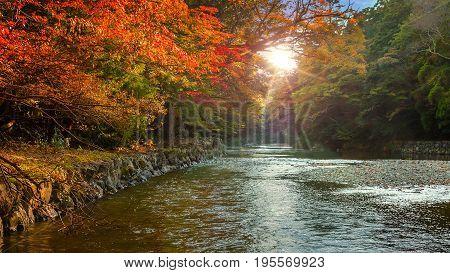 Isuzu river that runs through Ise Jingu Naiku(Ise Grand shrine - inner shrine)
