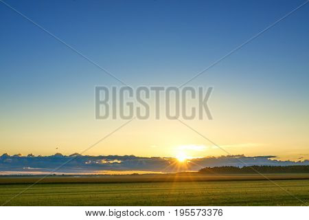 summer rural landscape with sunrise field sky and sun. scenery with sunrise morning of new day