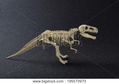 a tyrannosaurus skeleton on a dark background