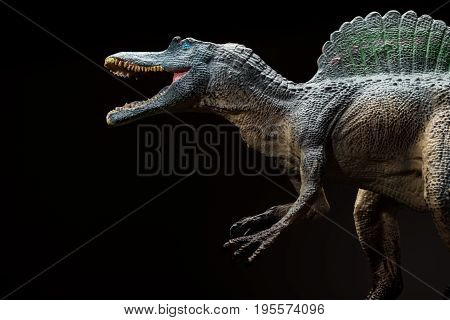 a Spinosaurus toy on a dark background