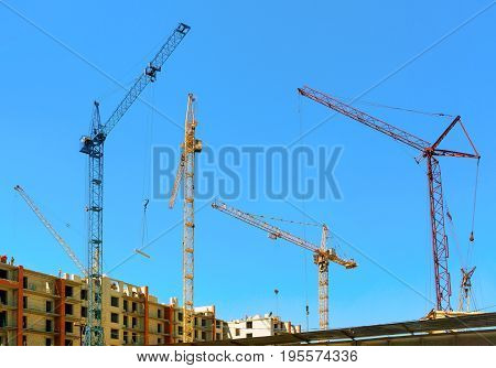 Cranes Under A Blue Sky
