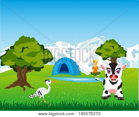 Landscape year with cow on meadow and tent beside lake