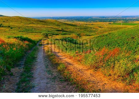 The twisting dirt road downhill the hill. On the parties on slopes of hills green herbs and bushes.