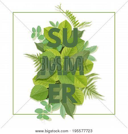 Summer letter with green leaves. Season sale vector label. Foliage lettering. Floral illustration. Summertime poster. For t-shirt, fashion, prints, banner or packaging design