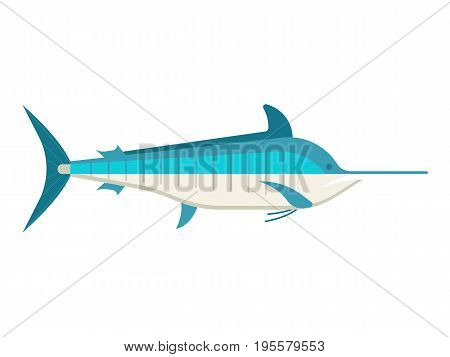 Blue marlin fish vector illustration. Ocean swordfish isolated on white background.