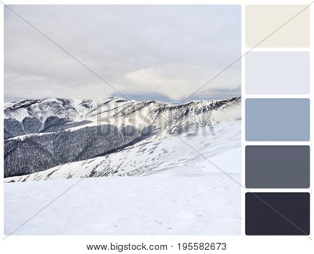 Winter Landscape With Palette Color Swatches