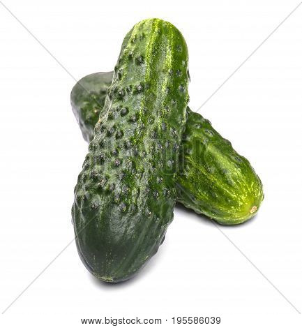 Summer harvest of juicy and ripe cucumbers vegetables. Two whole, juicy and green cucumbers, isolated on a white background. Healthy food.