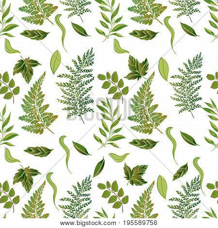 Hand drawn vector seamless pattern with floral elements. Vector pattern with leaves, twigs, branches, berries, grass.