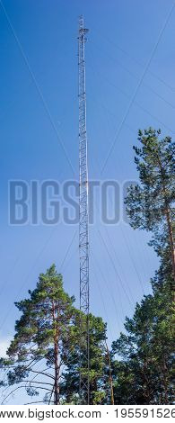Steel lattice mobile communication mast with guy wires among the pines on a background of the clear sky