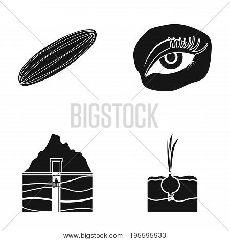 Cucumber, onion and other  icon in black style. makeup, mine icons in set collection.