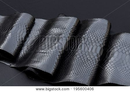 Genuine Python snakeskin leather, snake skin, texture, reptile on a black background.