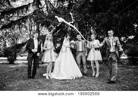 Stunning Wedding Couple With Bridesmaids And Groomsmen Drinking Champagne In The Park On A Perfect S