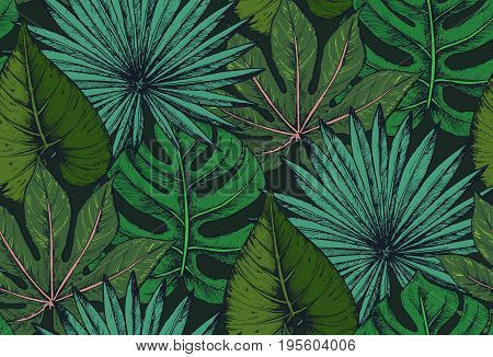 Vector seamless pattern with compositions of hand drawn tropical palm leaves, jungle plants. Beautiful colorful natural endless background.