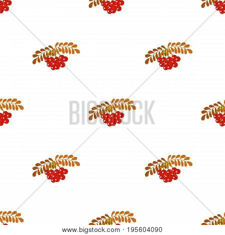 Seamless pattern with Rowan berries. For printing on fabrics paper for scrapbooking. Vector illustration.