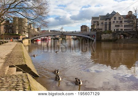 York historic English city with ducks on River Ouse and Lendal bridge