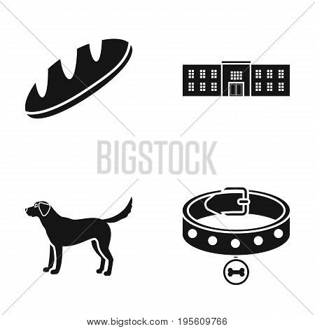 cooking, animal and or  icon in black style. building, veterinary science icons in set collection.
