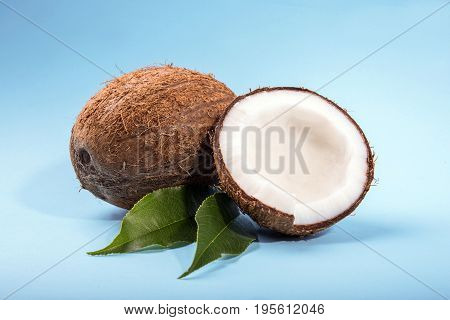 Coconuts with half and green leaves on a bright blue background. Ripe, fresh and appetizing coconuts. Organic fruits. Brown natural tropical and fresh fruit coconuts.