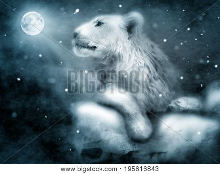 Photo manipulation of lion on rock in night winter landscape