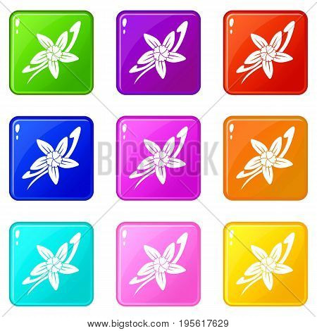 Vanilla sticks with a flower icons of 9 color set isolated vector illustration