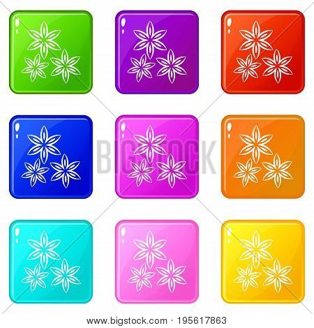 Star anise icons of 9 color set isolated vector illustration