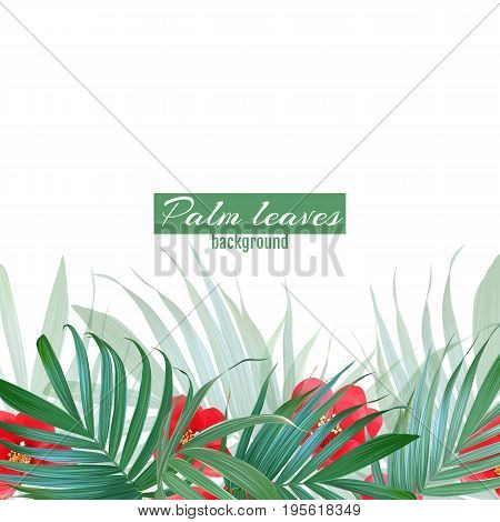 Vector palm leaves and flowers poster. Tropical banner. Stylish background with exotic plants. Hawaiian blooming design. Botanical frame. Ttropic flower bouquet.