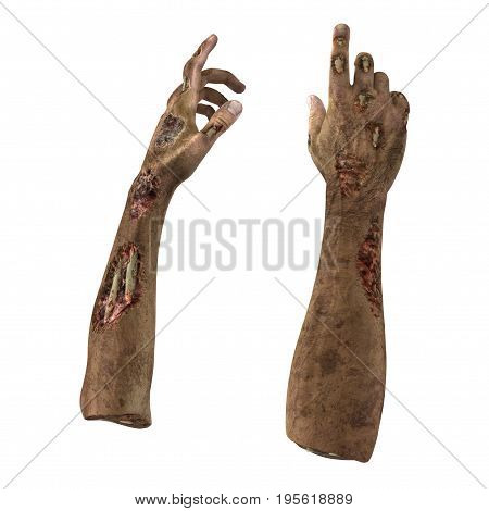 Zombie Halloween hand on white background. 3D illustration