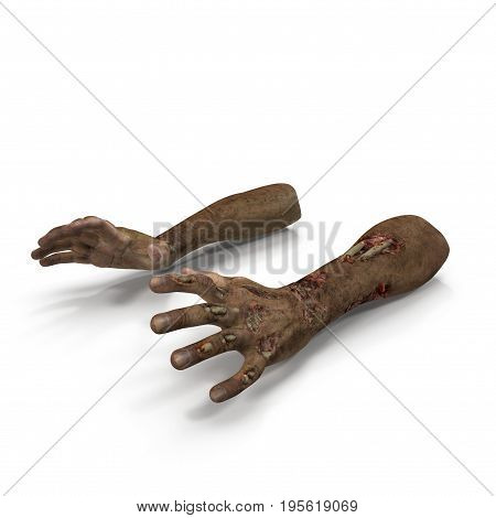 Terrible zombie hands, dirty hands of the mummy, on white background. 3D illustration
