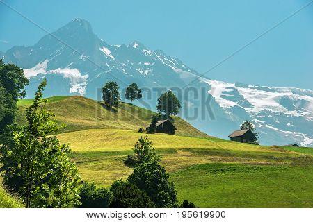 Scenic Swiss Landscape with Wooden Cabins. Jungfrau Region Switzerland