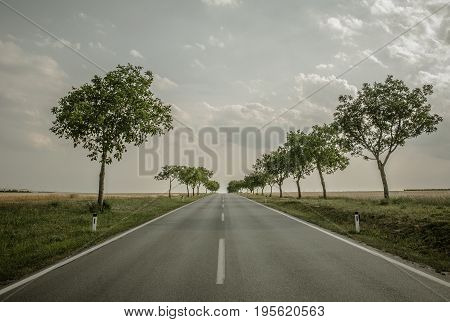 Scenic Vacation Getaway Road. Countryside Highway with Trees Along.