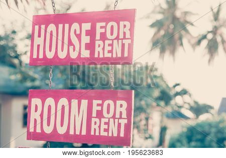 Two Sign House and Room for Rent in tropical island