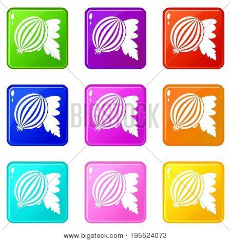 Gooseberry with leaves icons of 9 color set isolated vector illustration