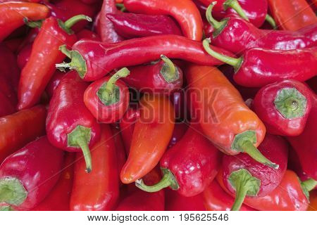 Sale Of Hot Red Pepper