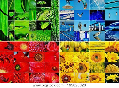 Collage made up of a green blue red and yellow collage