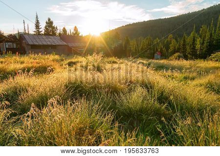 Grass On The Field In The Dew With Village Houses At Dawn