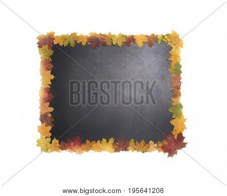 Blackboard in a frame of autumn leaves.
