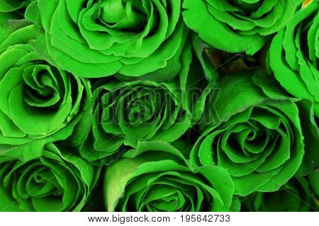 Fantasy green roses bouquet for use as background.