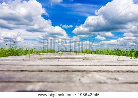 Wonderful Wide View Over Wooden Trail At The National Park High Fens Between Eifel And Ardennes