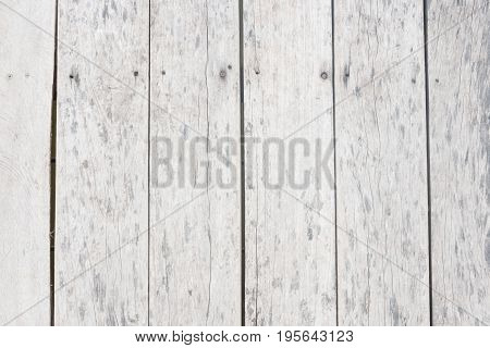 White wooden background with plenty of spotted