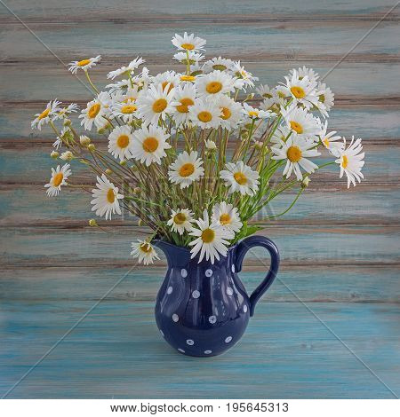 Bouquet of camomiles in a dark blue ceramic vase on a blue background. Wild daisies. Colorful bouquet in a vase.