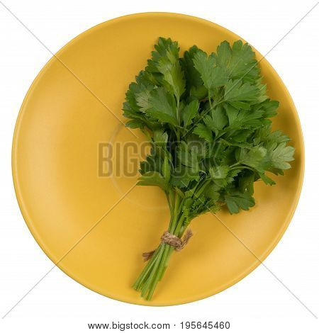 Parsley on a plate isolated on white background. Top view.
