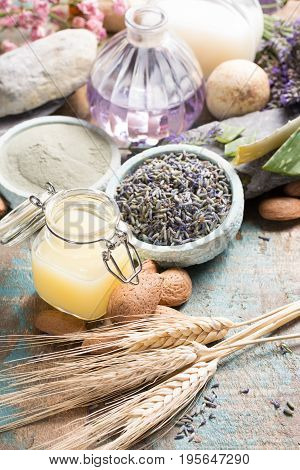 Nature cosmetics handmade preparation with essential oils and ancient minerals of perfume skincare creams soaps from fresh and dried lavender flowers roses wheat almond nuts green clay powder in French artisanal boutique home style