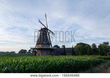 Dutch Windmill, Small Village In North Brabant, Mill And Corn Fields On Sunset
