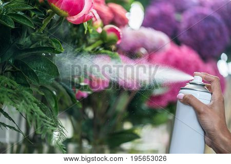 Close-up Partial View Of Florist Spraying Beautiful Flowers In Flower Shop
