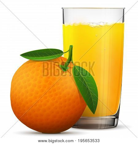 poster of Orange juice in glass isolated on white background. Whole orange fruit with fresh squeezed juice glass. Best vector illustration about beverages fruits agriculture food gastronomy etc