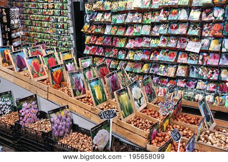 Flower Bulbs Market