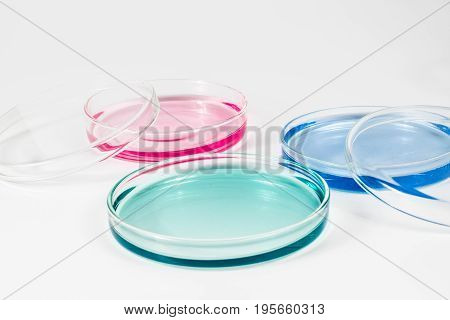 color liquid in petri dishes. laboratory, science and clinic background